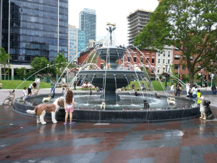 Fontaine aux chiens